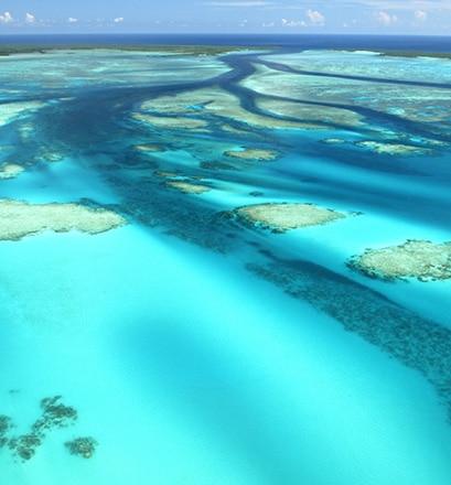 Se baigner sur l'Atoll d'Aldabra - Seychelles