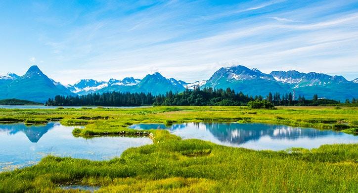 5 raisons de visiter l'Alaska
