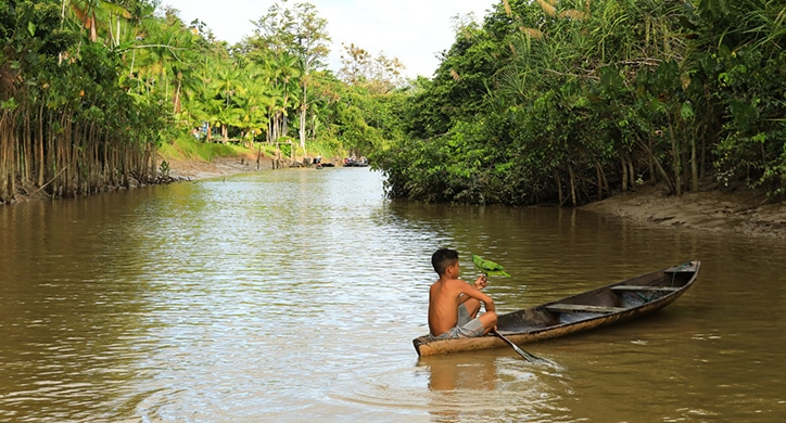 L'Essentiel de l'Amazonie