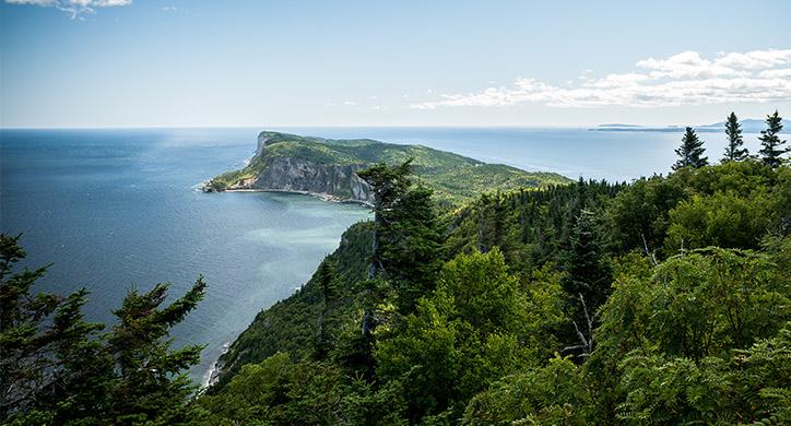 3 raisons de visiter l'Amérique du Nord en croisière