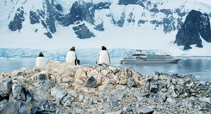 5 raisons de partir en Antarctique