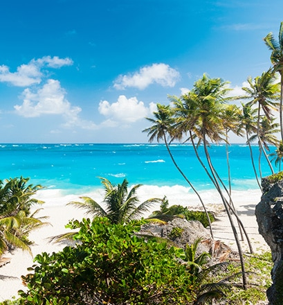 Discover the amazing island of Barbados