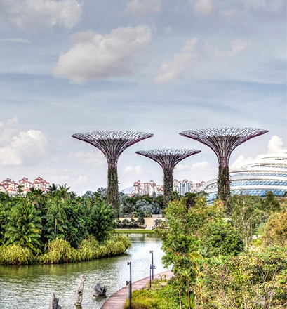 Entspannen in den futuristischen Gardens by the Bay – Singapur