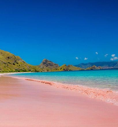Se prélasser à Pink Beach, plage unique au monde - Indonésie