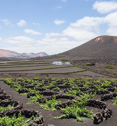 Passer une journée à Arrecife, île de Lanzarote