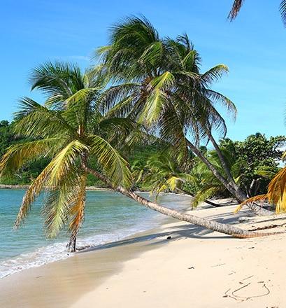 Pour profiter des plages paradisiaques