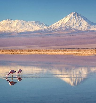 Explore the Atacama desert, Chile