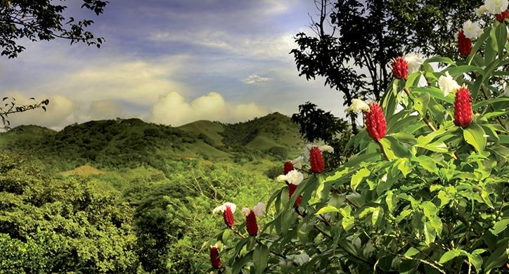 L'essentiel - Costa Rica, Belize, Guatemala