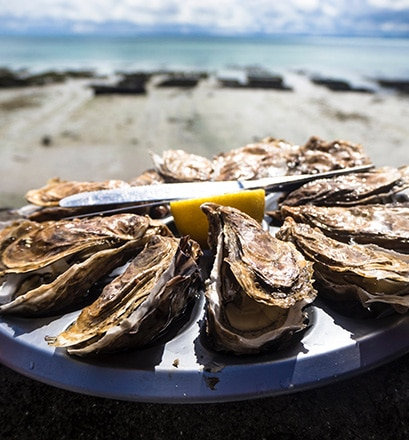 Try oysters and explore Saint-Malo
