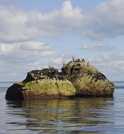 Tour the Glénan Islands