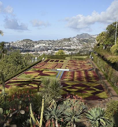 Prendre son temps à Funchal