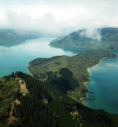 S'émouvoir devant la beauté des paysages des fjords de Marlborough - Nouvelle-Zélande