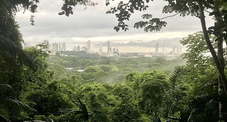 L'essentiel du canal de Panama