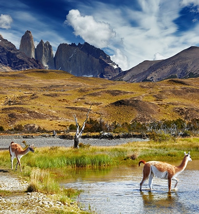 Hike in the Torres del Paine national park