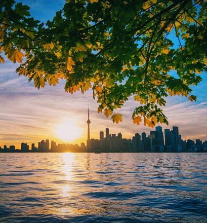 Découvrir la vie trépidante de Toronto - Canada