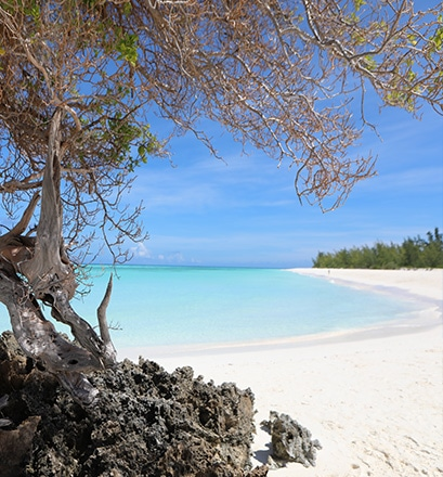 Deserted beaches and varied landscapes