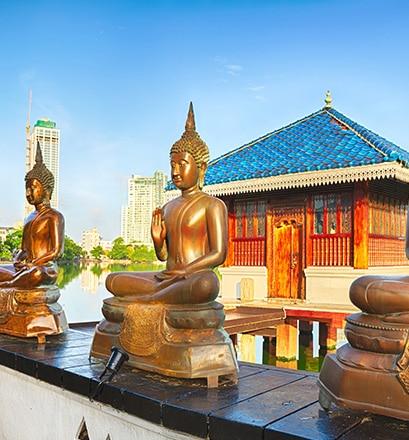 Immerse yourself in bustling Colombo - Sri Lanka