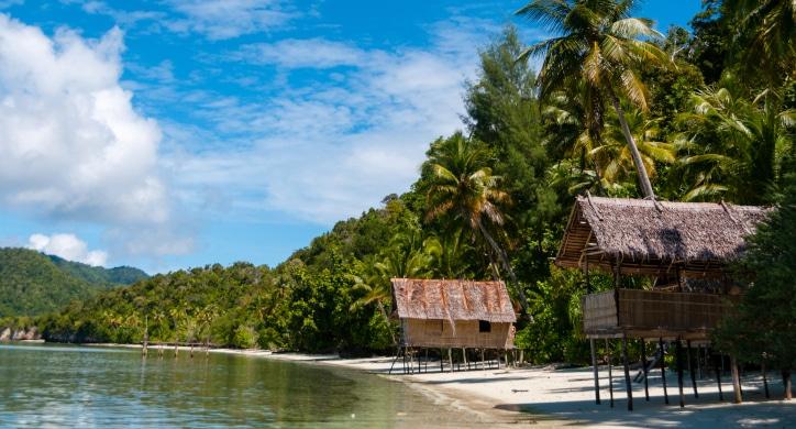 Essential Papua New Guinea, Vanuatu, Solomon Islands