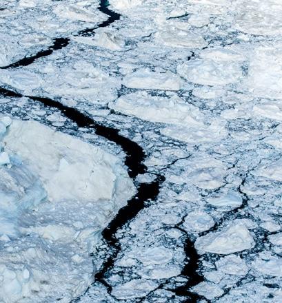 Progresser lentement au coeur des glaces